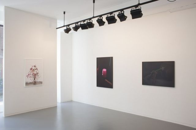 Elspeth Diederix, , Installation Shot,