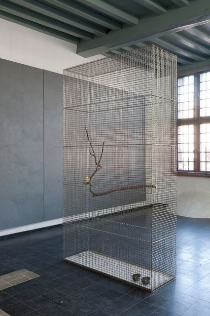 Lucas Lenglet, Stainless steel, bird, branch, One cage for one bird, 2015