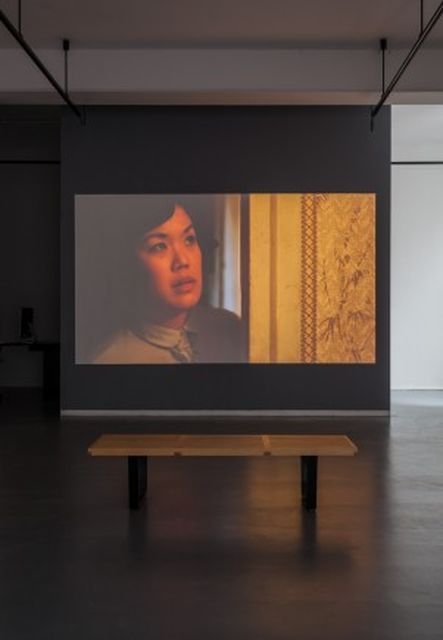 Saskia Olde Wolbers, Voice over Tom Brooke, 18 min HD video, Yes, these eyes are the windows (Installation), 2015