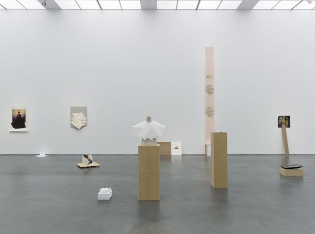 Jimmy Robert, Museum of Contemporary Art Chicago, Vis-à-vis, exhibition overview, 2012
